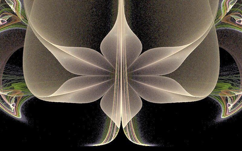 Trillium Image